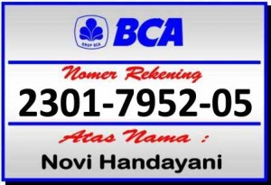 bank-bca-istanacarwash